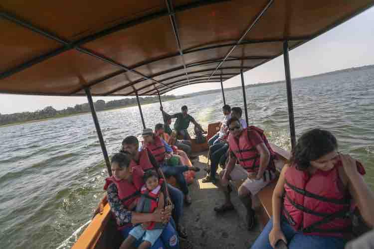 Birdwatching Boat Cruise